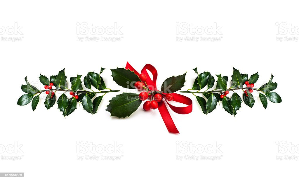 Christmas Holly royalty-free stock photo