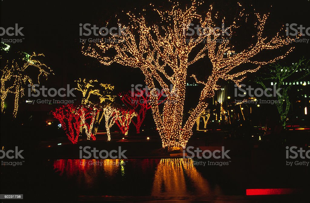 Christmas in Hawaii royalty-free stock photo
