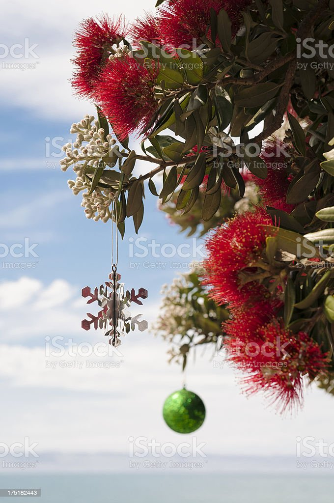 Christmas in New Zealand stock photo