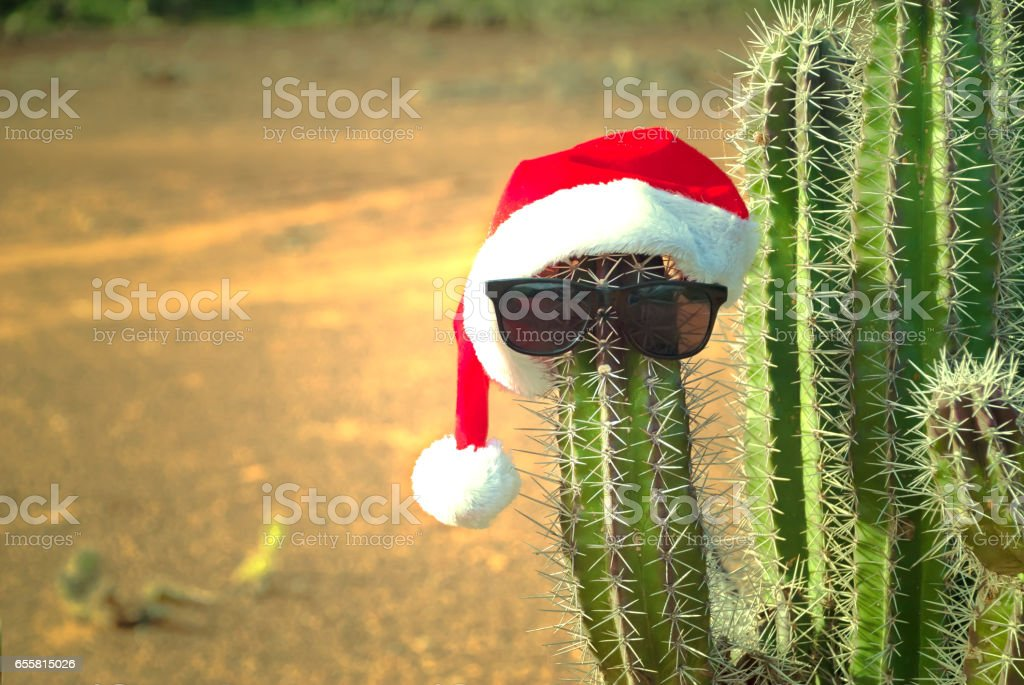 Christmas in tropical country stock photo