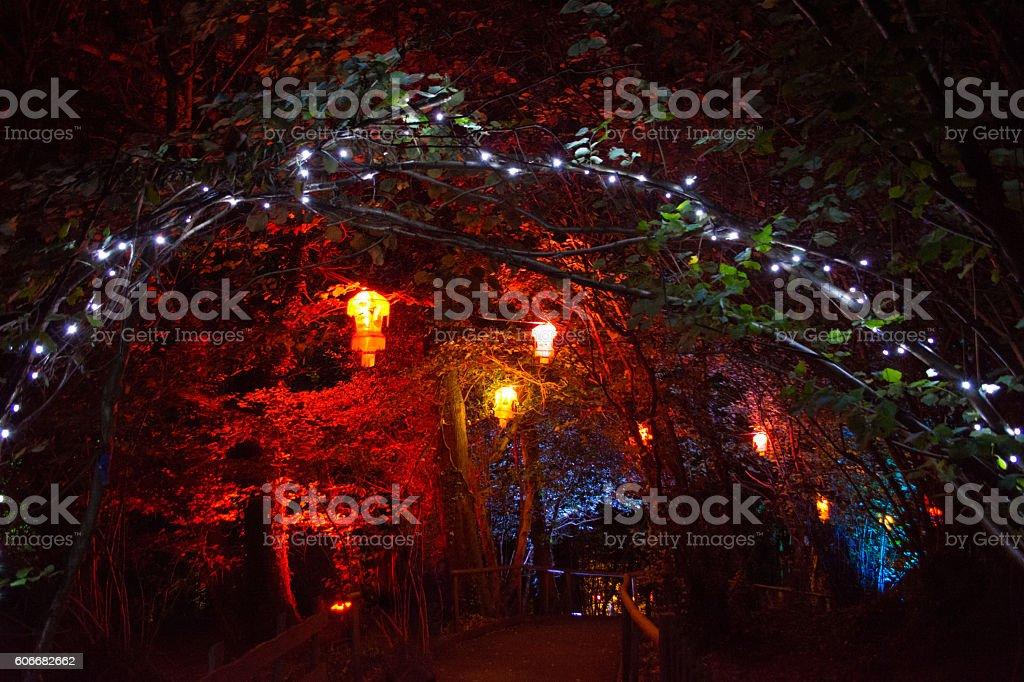 Christmas Lanterns and Fairy Lights stock photo