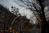 Christmas lighting on the trees in Vienna