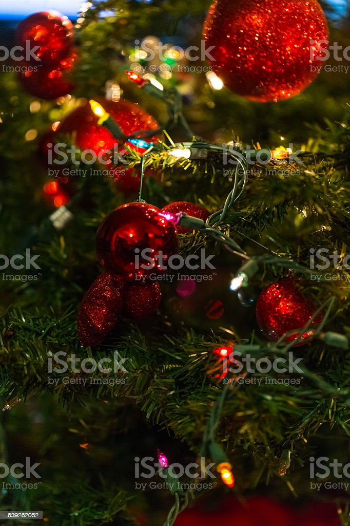 Christmas lights on a tree stock photo