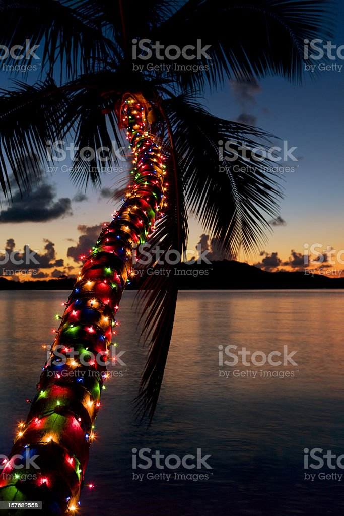 Christmas lights on palm tree at a Caribbean beach royalty-free stock photo