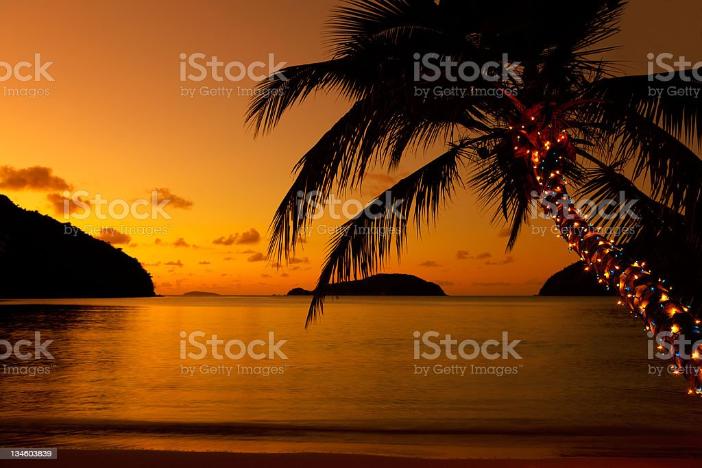 Christmas lights on palm tree at the Caribbean beach stock photo