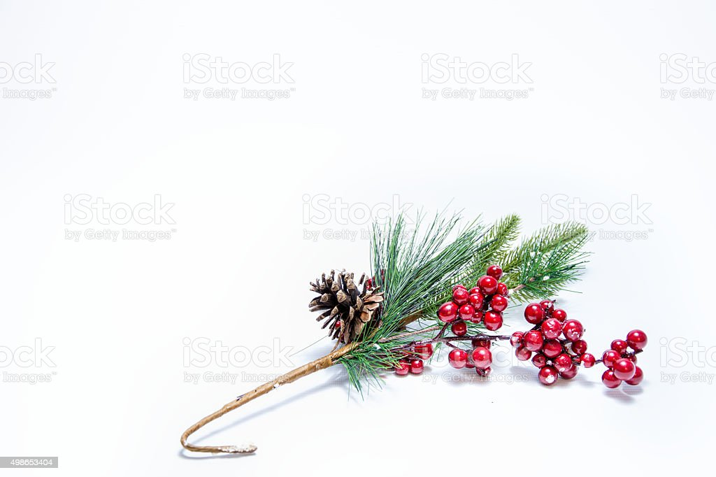 Christmas Mistletoe On White Background. stock photo