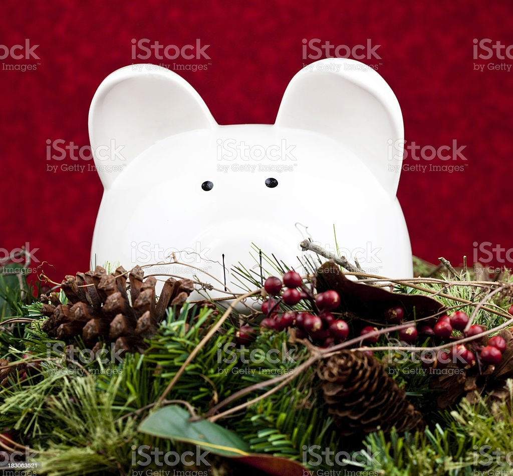 Christmas Money stock photo