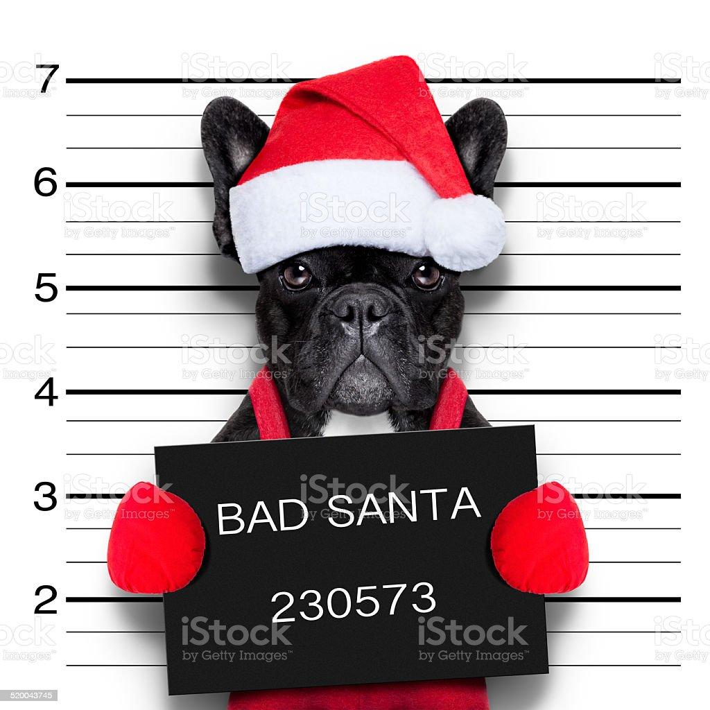 christmas mugshot stock photo