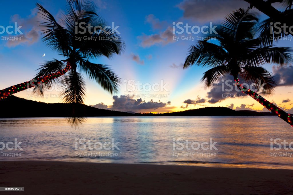 Christmas palm trees at sunset on a Caribbean beach stock photo