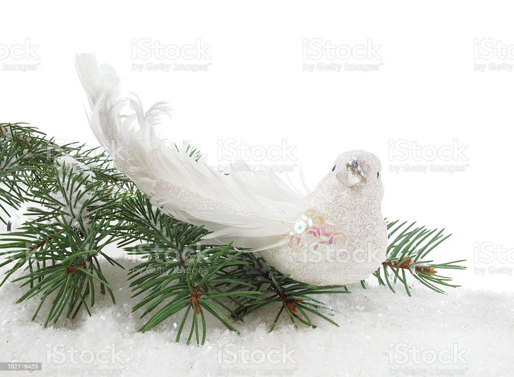 Christmas Partridge royalty-free stock photo