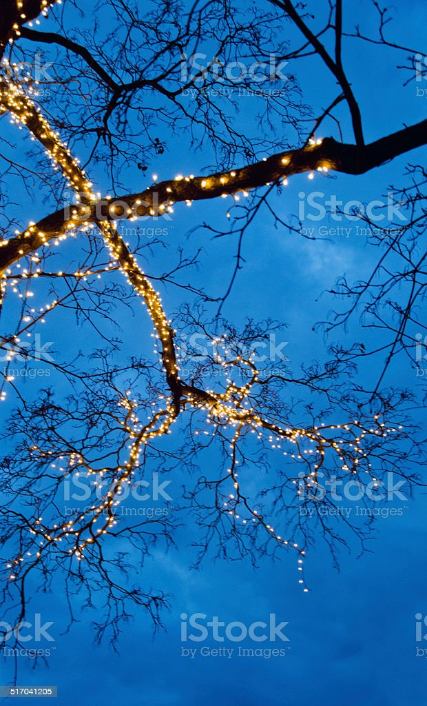 Natal foto de stock royalty-free