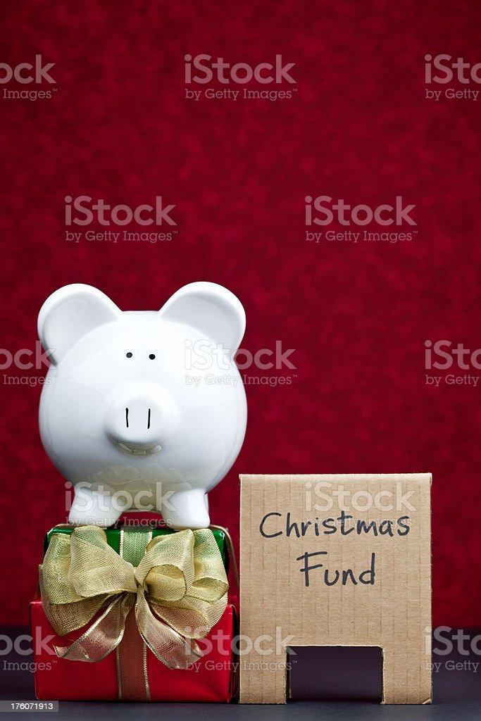 Christmas Piggy stock photo