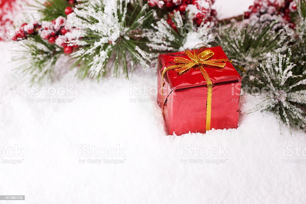 Christmas Present in Snowy Holly Branch Border, Copy Space royalty-free stock photo