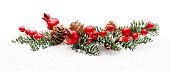 Christmas Red Berry Branch Decoration, Holiday Xmas Berries on Snow