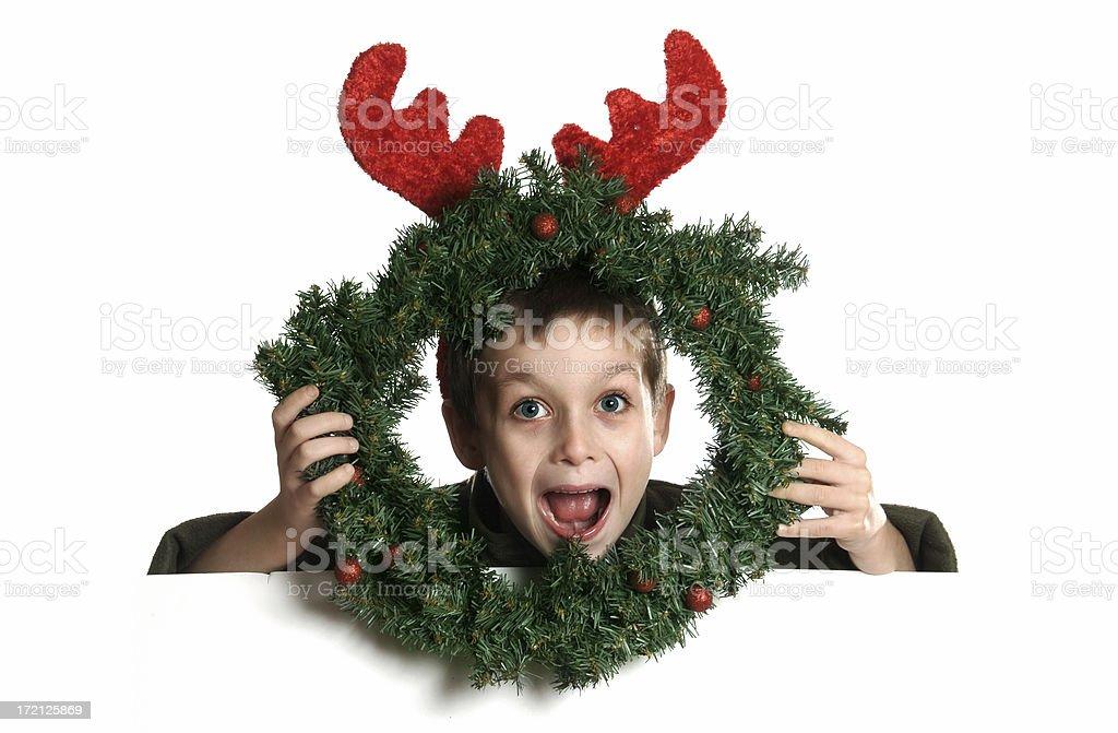 Christmas - Reindeer Smile royalty-free stock photo