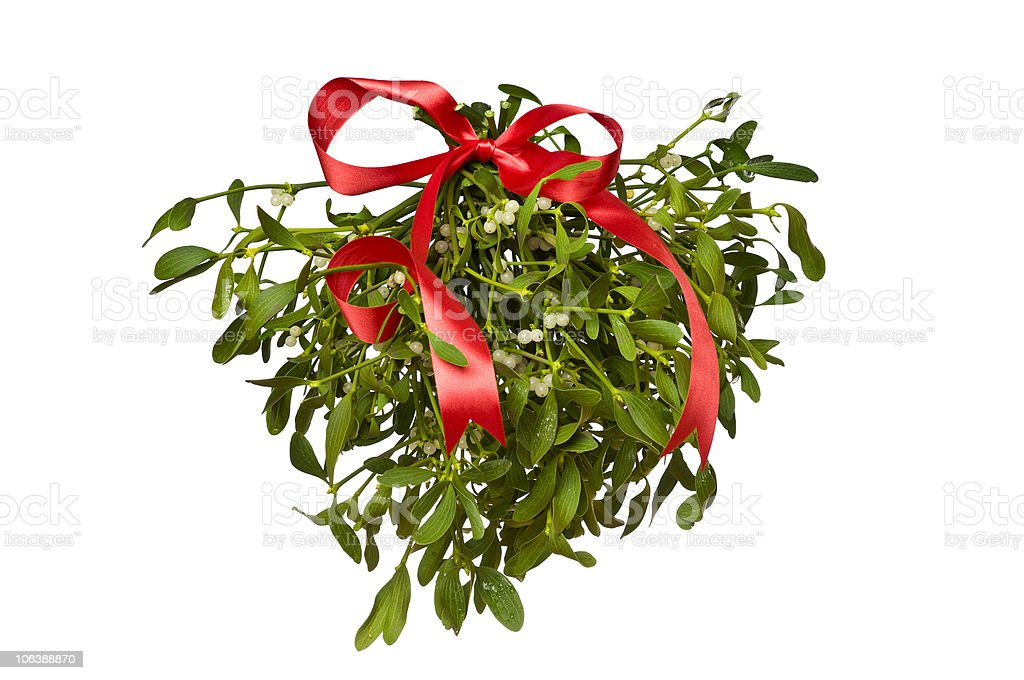 Christmas series - Hanging green mistletoe with a red bow royalty-free stock photo