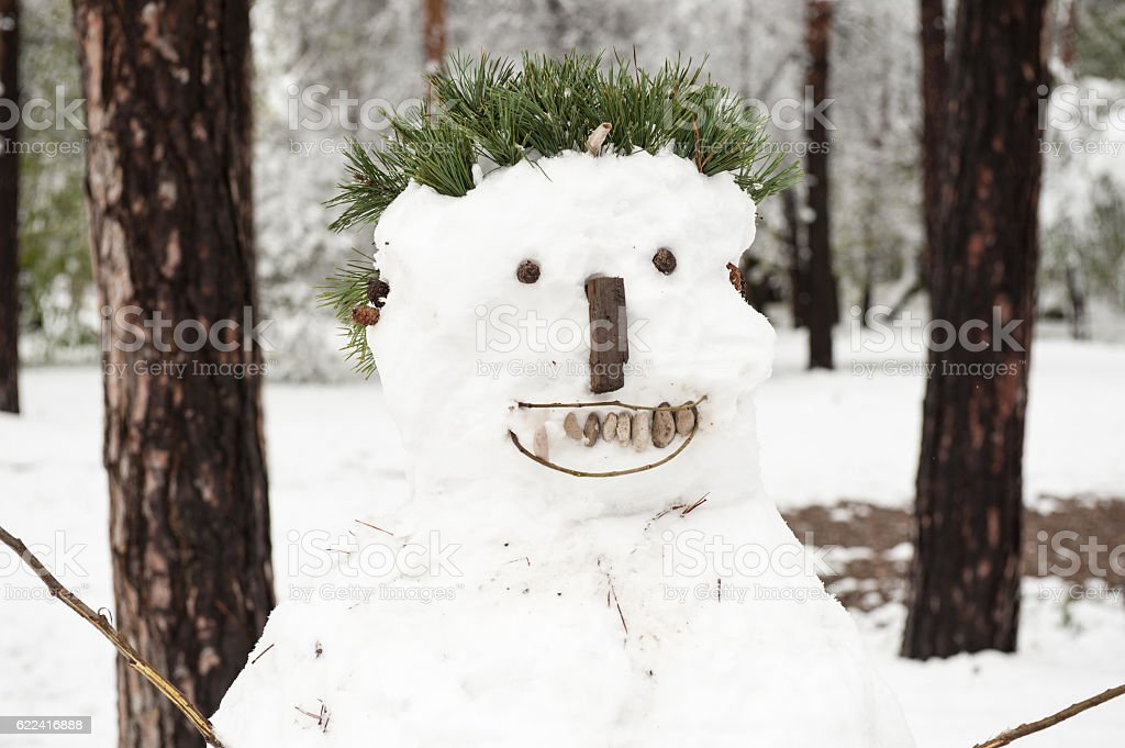Christmas snowman in the park stock photo