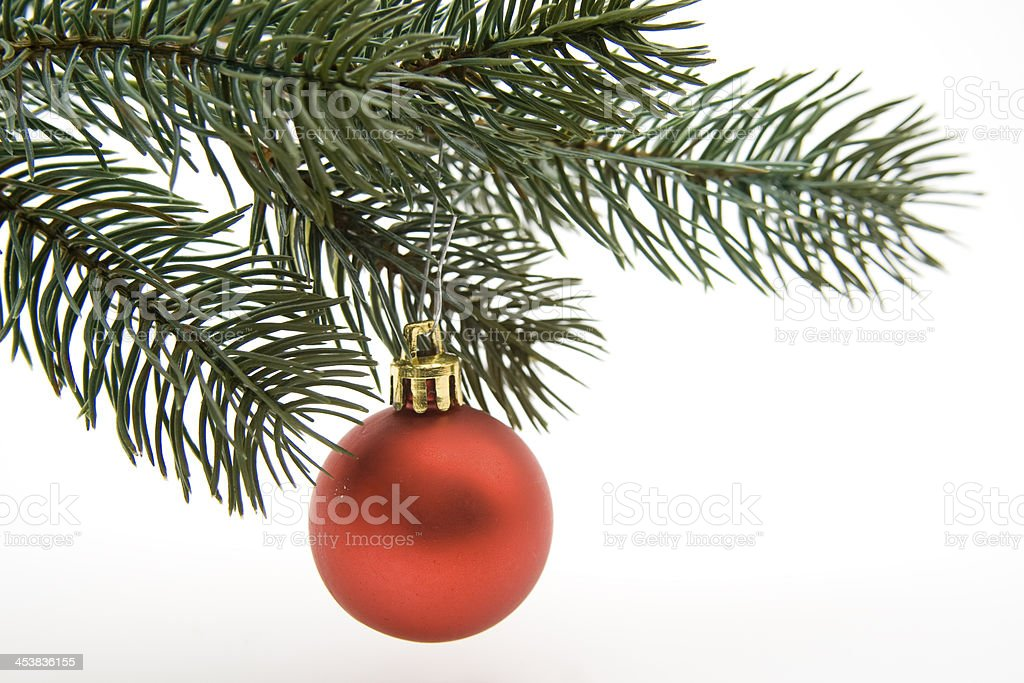 Christmas sphere to fir branches stock photo