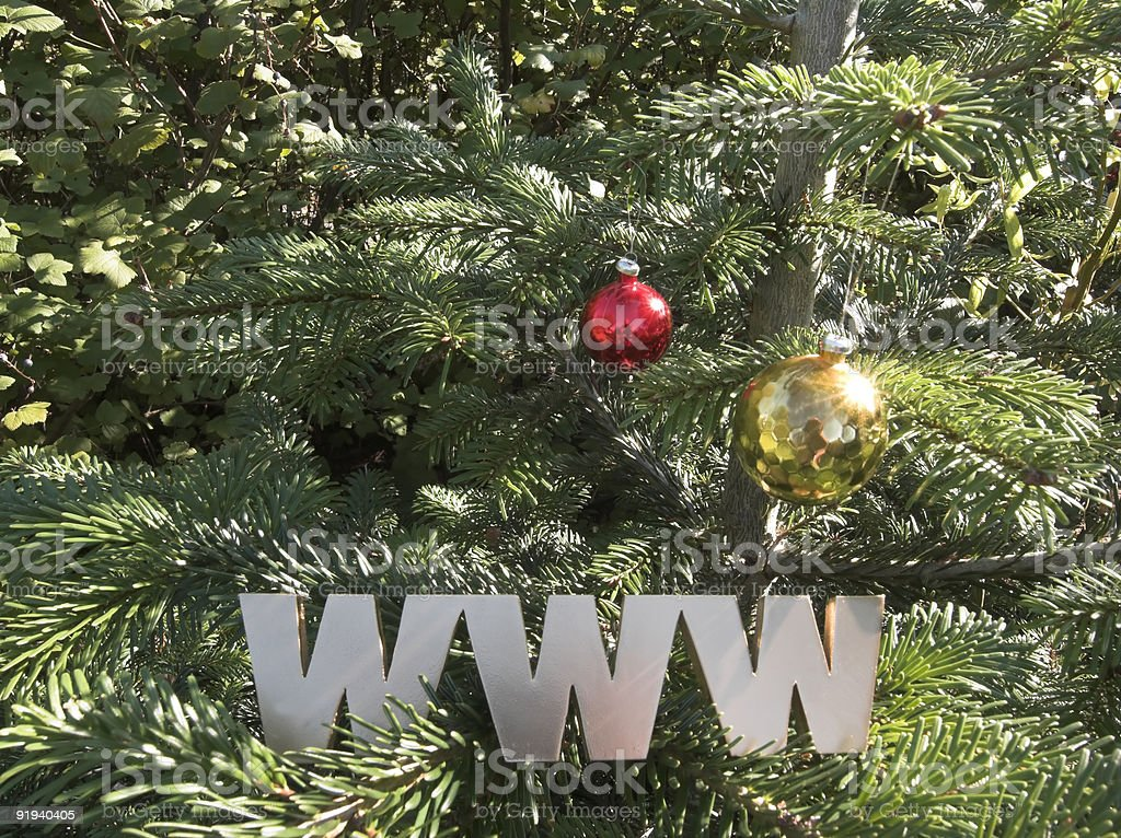 Christmas  Spruce royalty-free stock photo
