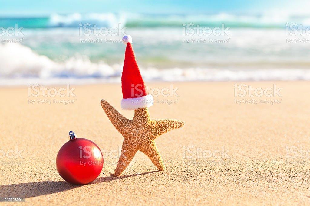 Christmas Starfish Santa Claus on Tropical Beach Vacation in Hawaii stock photo