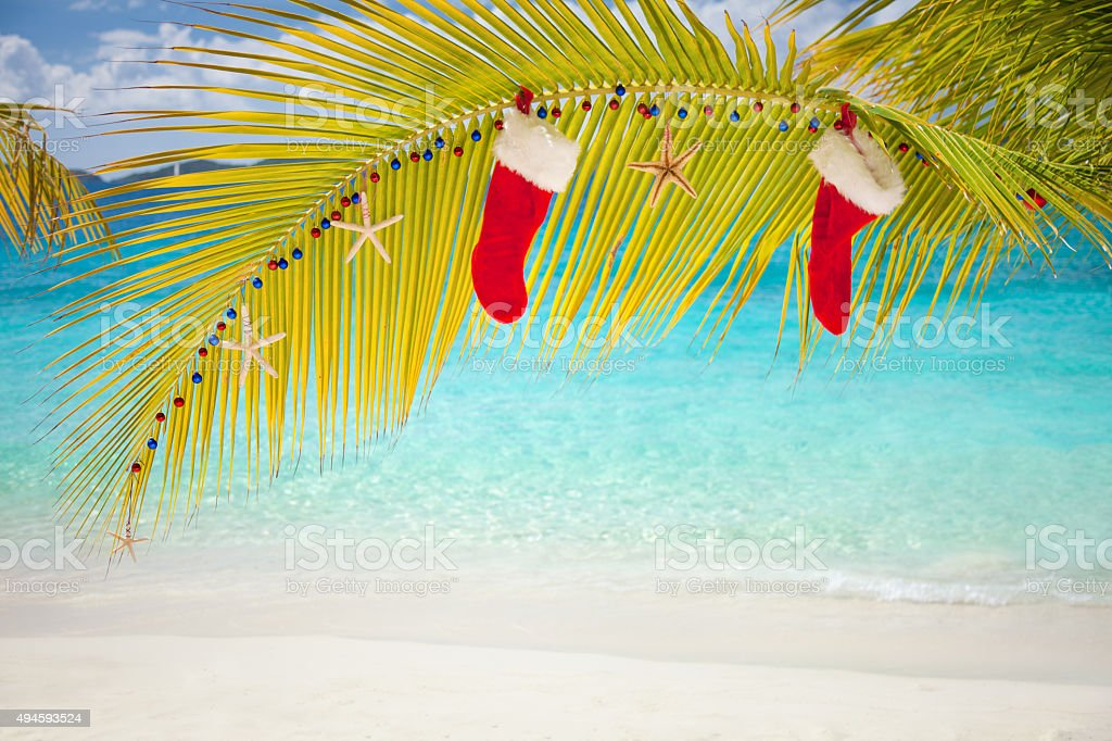 pair of Christmas stockings hanging off the palm frond decorated with...
