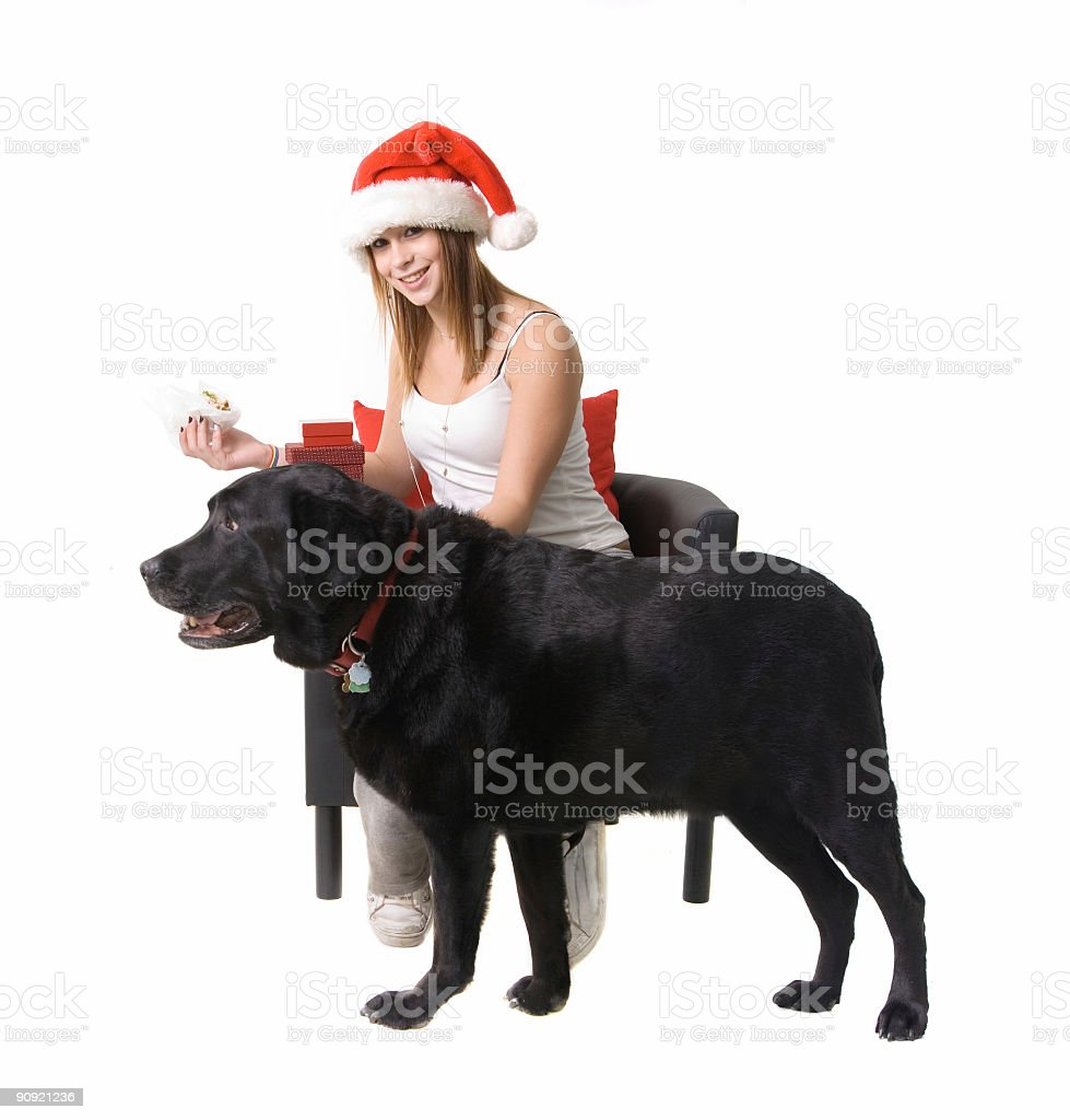 Christmas teen with her doggie royalty-free stock photo