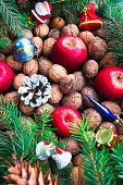 Christmas toys, nuts, fir cones, apples and twigs