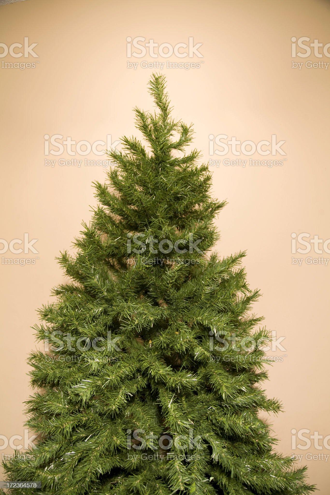 Christmas Tree against tan royalty-free stock photo