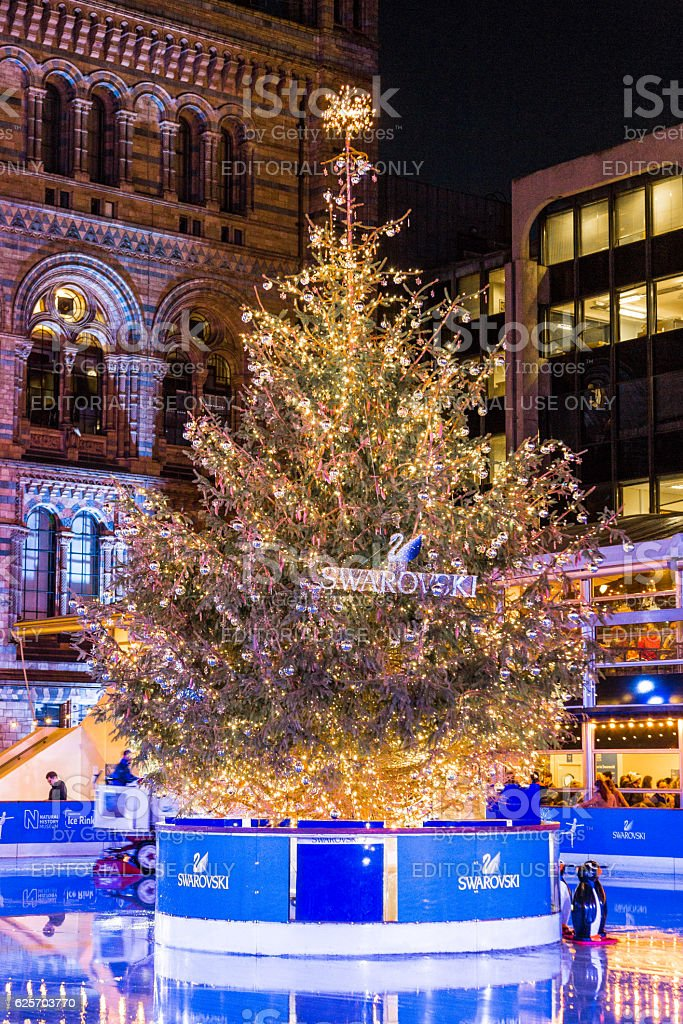 Christmas tree and ice rink, Natural History Museum, London, UK stock photo
