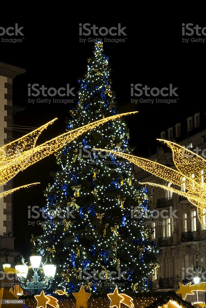 Christmas tree and lights royalty-free stock photo