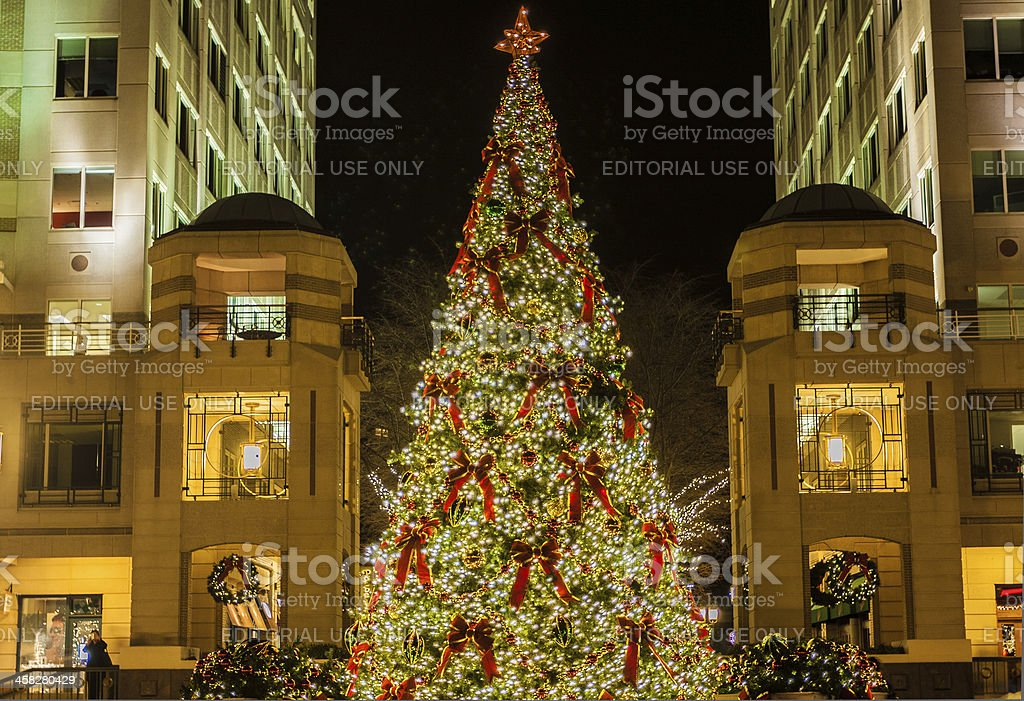Christmas Tree at Reston Town Center royalty-free stock photo
