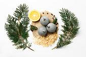 Christmas tree branch, lemon, New Year decoration balls isolated on