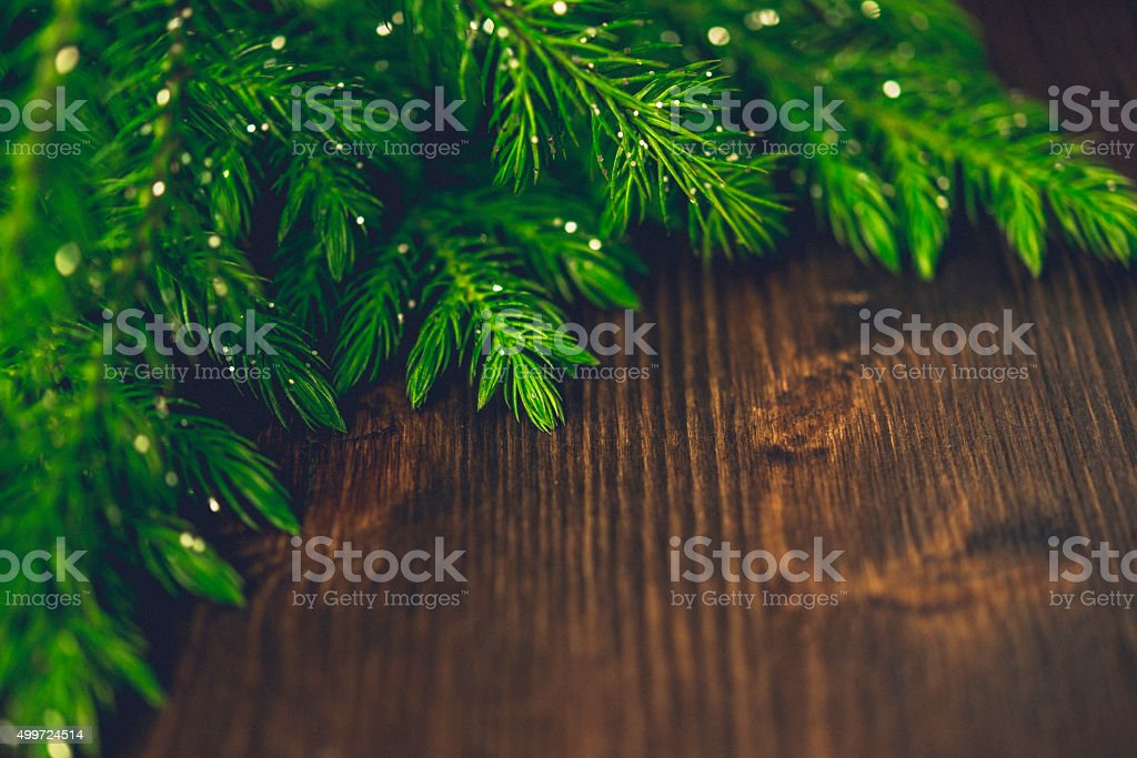 Christmas tree branches background on rustic wood table stock photo