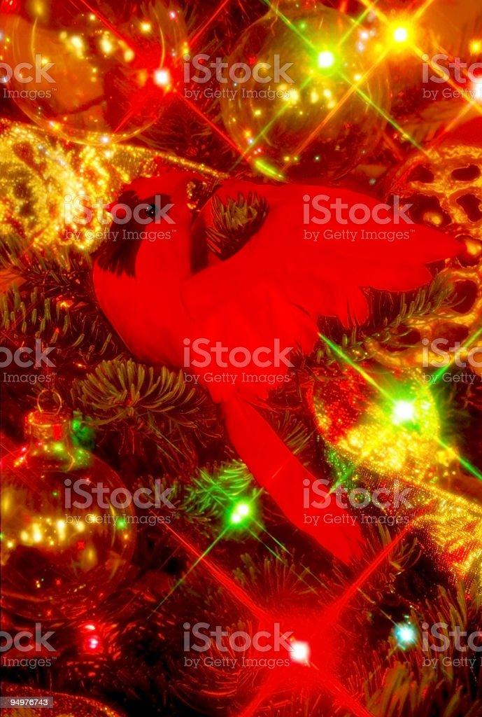 Christmas Tree, Cardinal & Ornaments stock photo