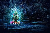 Christmas tree celebration at night