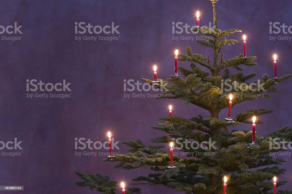 Christmas tree decorated with red candles stock photo