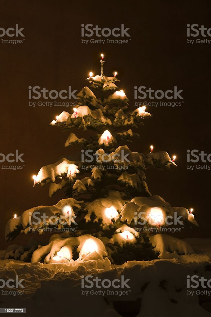 Christmas tree decorated with red candles royalty-free stock photo