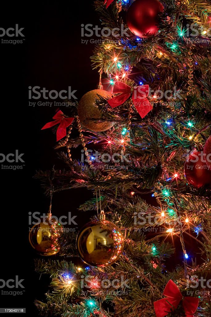Christmas Tree Detail royalty-free stock photo