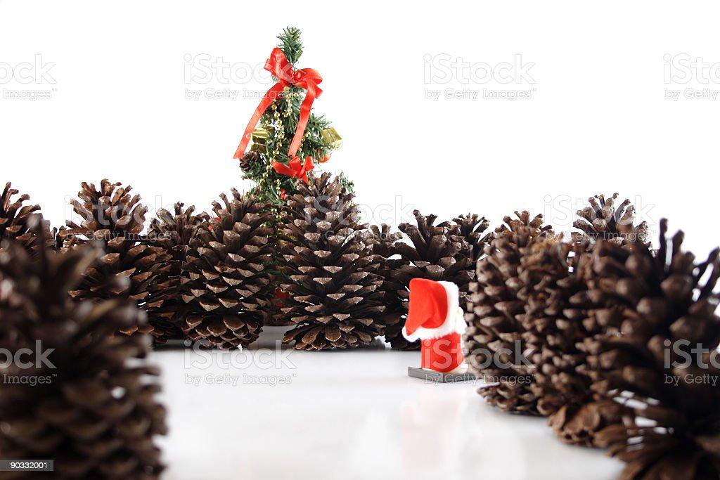 Christmas tree here I go! royalty-free stock photo