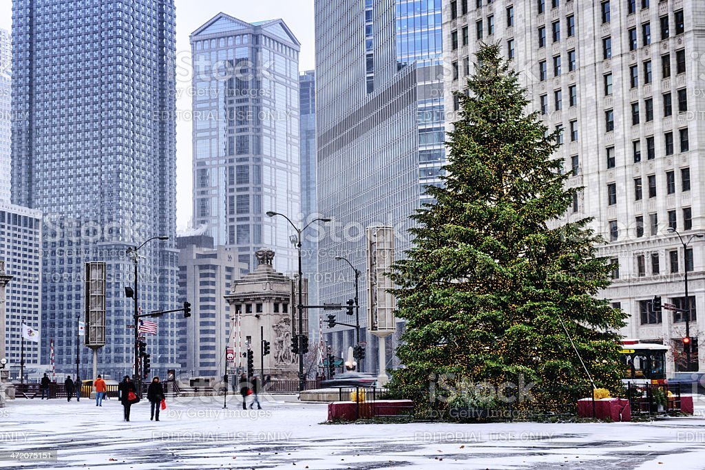Christmas Tree In Chicago Snowstorm Royalty Free Stock Photo