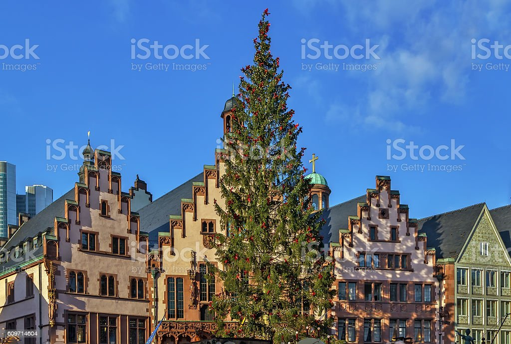 Christmas tree in front of the town hall, Frankfurt stock photo