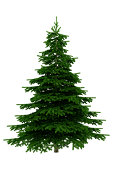 Christmas Tree Isolated on White Background (XXXL) FREE Alpha Ch
