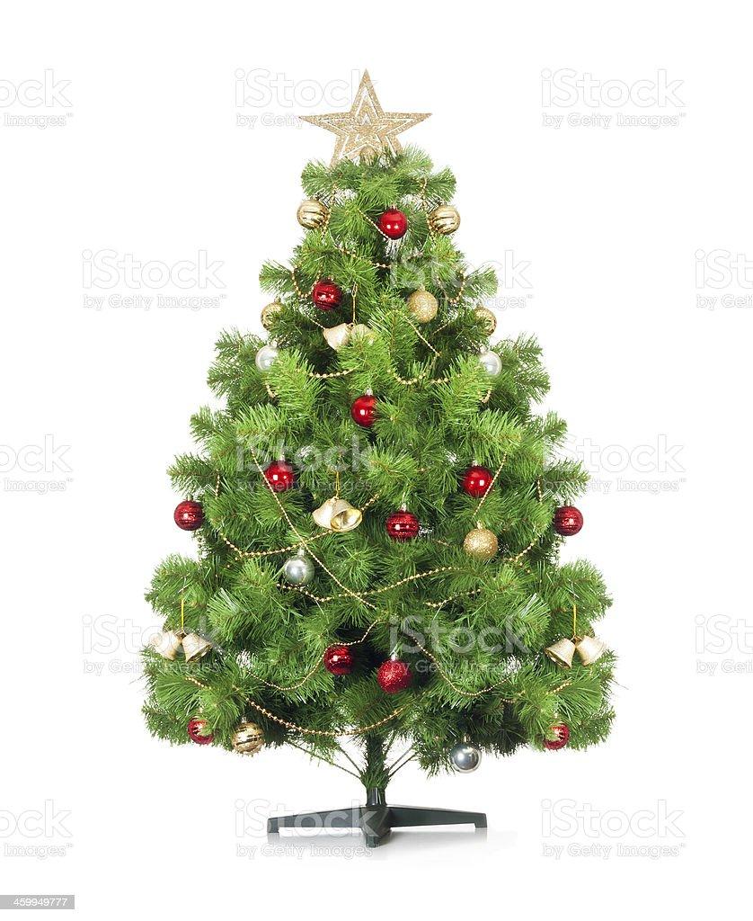 Christmas tree isolated. stock photo