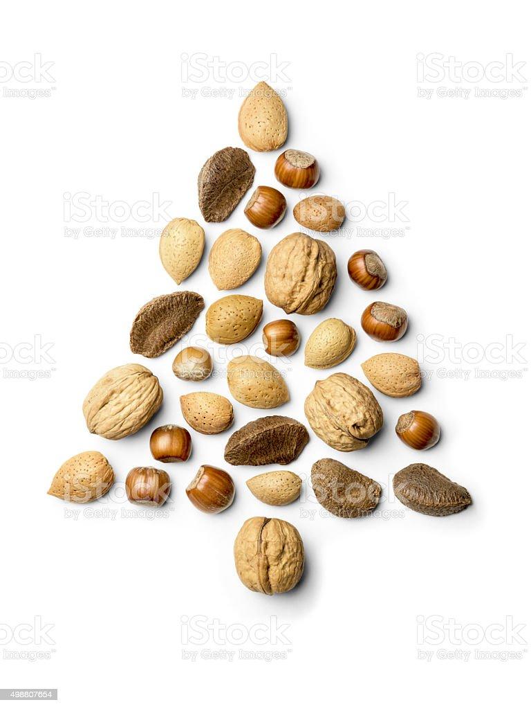 Christmas tree made from Almonds, Walnut, hazelnut, and Brazil n stock photo