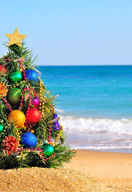 Christmas Decoration Stock Photo Tree On The Sand In Beach
