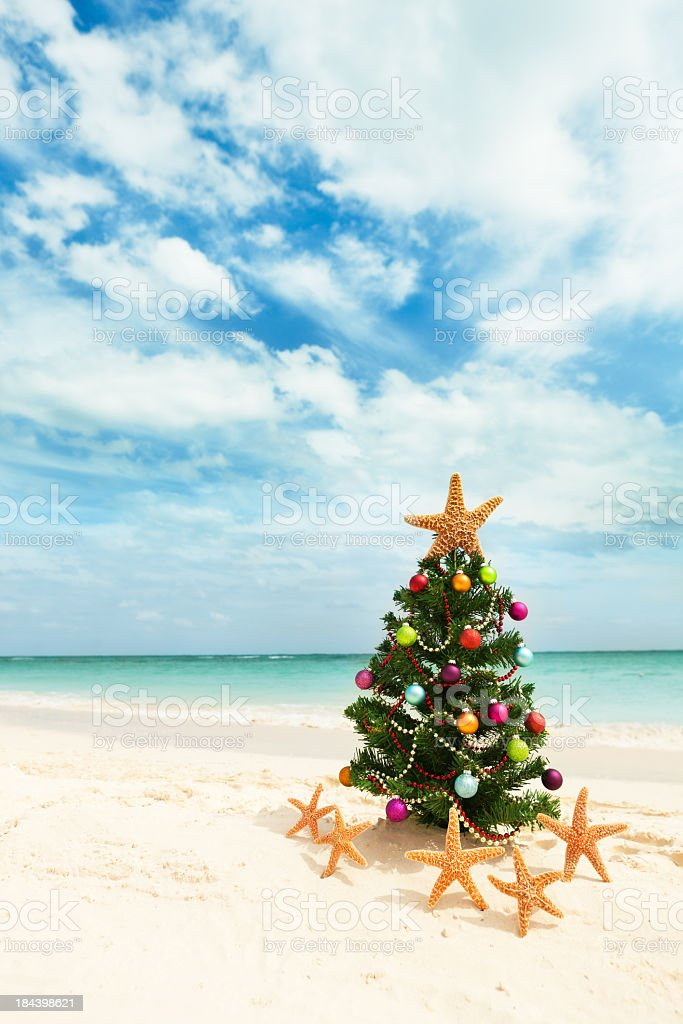Christmas Tree on Tropical Caribbean Beach in Winter Holiday Vacation stock photo
