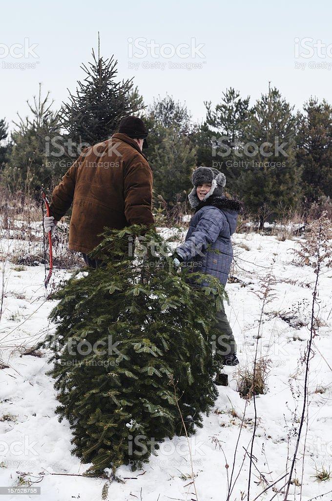 O Christmas tree royalty-free stock photo