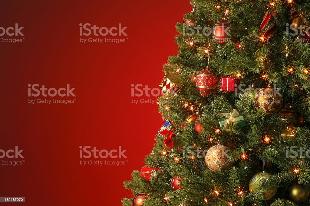 Christmas Tree (Star Filter) royalty-free stock photo