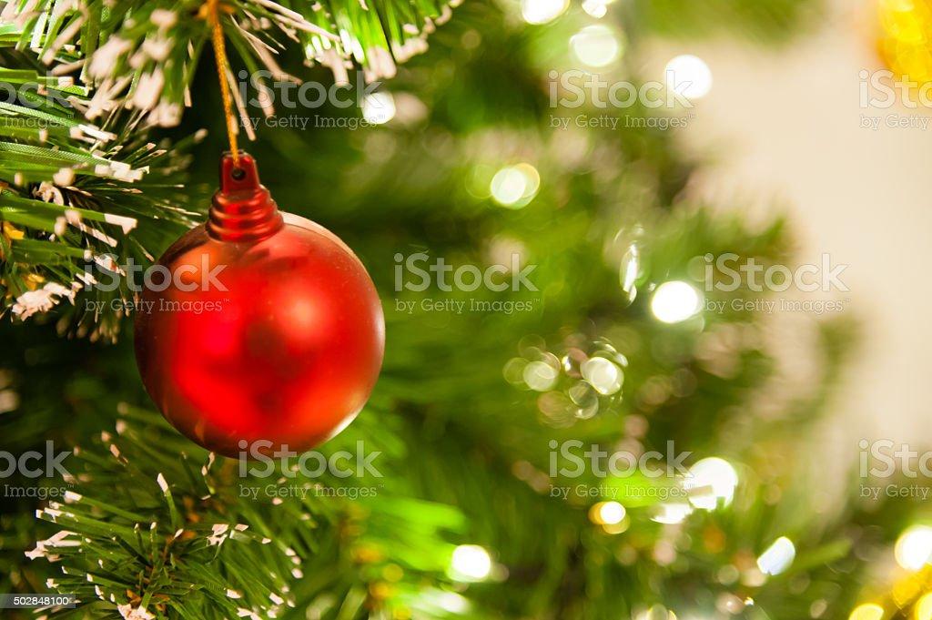 Christmas tree stock photo