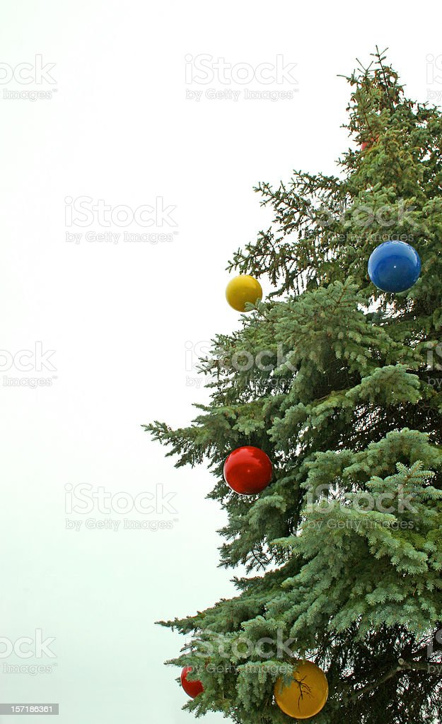 Christmas Tree View Vertical stock photo